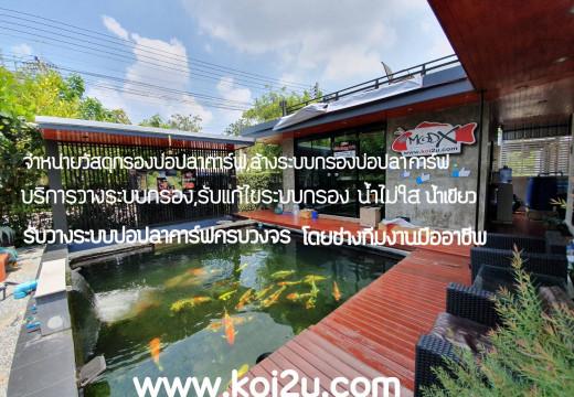 บ่อปลา koi2u