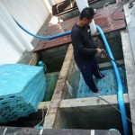 Koi2U by ModX - บริการล้างบ่อปลา